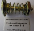 T16 Bonnet pin assembly