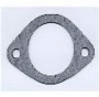 G13 - Thermostat gasket